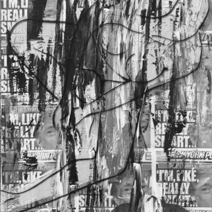 """Nude on Trump 2″, collage / acrylic on canvas / printed plexiglass, 50cm x 100cm, 2018"